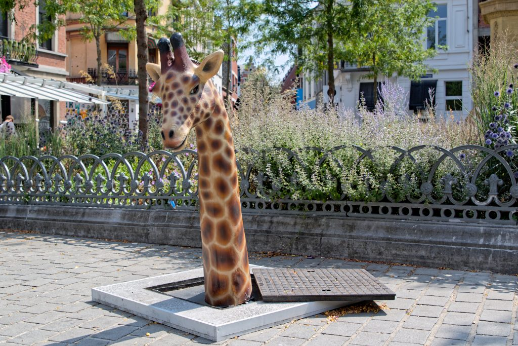 Girafe au long cou